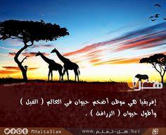 افريقيا موطن اضخم الحيوانات في العالم