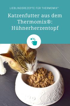 Katzenfutter: Hühnerherzentopf aus dem Thermomix® – Foto: Nicole Stroschein