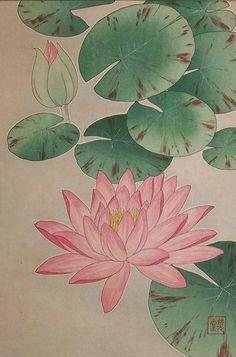 Shodo Kawarazaki - Brushpainting Fineline Ink and Wash Painting