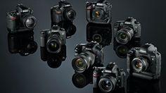 Full Frame cameras 2014 Comparaison