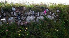 Share my Garden: Skywatch in Cornwall