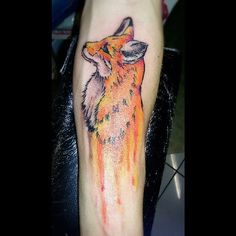 Fox aquacolor