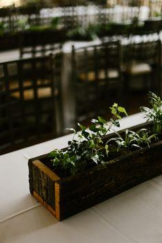 Rustic Moss Boxes - Reception Details - DIY Wedding  - www.DarlingBones.com