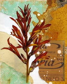 another cool floral print!!     From: http://3.bp.blogspot.com/-Uyk-f_kH_Ic/T9tmlz3RAbI/AAAAAAAAGnQ/5L6EmCp4gxo/s1600/Michael_Mew_botanical_prints_vintage_graphics_01.jpg