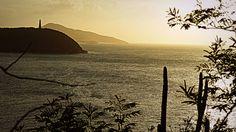 freedom and power, sea-mark, cacti, greenery - Isla de Margareta, Venezuela, South America Cacti, South America, Greenery, Freedom, Sea, Travel, Venezuela, Cactus Plants, Liberty