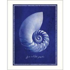 GI Artlab 'Nautilus Shell' Framed Wall Art