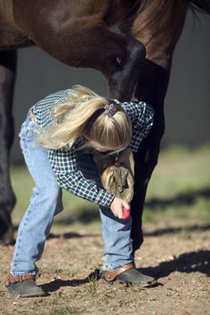 picking a horses hoof