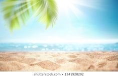 Find Abstract Blur Defocused Background Nature Tropical stock images in HD and millions of other royalty-free stock photos, illustrations and vectors in the Shutterstock collection. Thousands of new, high-quality pictures added every day. Beach Background, Sun Light, Sand Beach, Blur, Summer Beach, Photo Editing, Palm, Royalty Free Stock Photos, Tropical