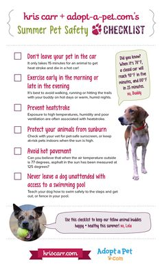Kris Carr and Adopt-a-Pet share 6 summer pet safety tips that could save your fur-kids' lives as temperatures rise including preventing heatstroke in dogs.