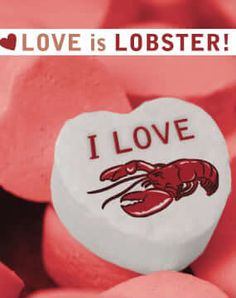Valentines Day Lobster Love. For a real steamy  dinner order a romantic lobster gift from LobsterAnywhere. Experts in lobster. Not love.