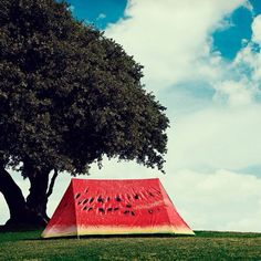 Water melon tent, perfectly fitting in with the landscape.
