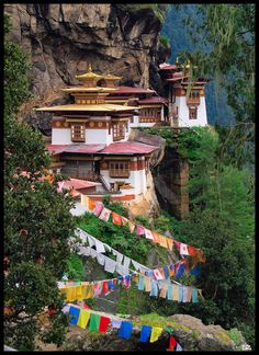 Prayer flags at Tiger's Nest Monastery in Paro, Bhutan