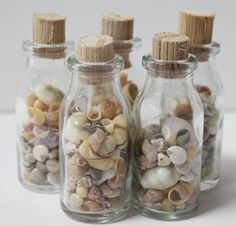 Small Shell Filled Glass Bottles - 10 Pieces - California Seashell Company Retail