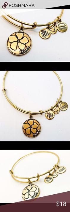 Alex and Ani Friend EWB RG New with no tags!!                                                        Pictures by me!! Alex & Ani Jewelry Bracelets