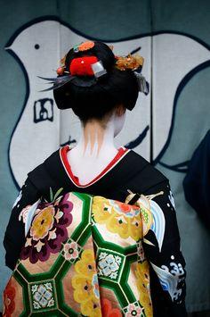 """geisha-licious: """" maiko Mametoyo on the day of her misedashi """" Japanese Geisha, Japanese Beauty, Japanese Kimono, Japanese Art, Asian Beauty, Geisha Japan, Japanese Folklore, Kyoto, Afrique Art"""