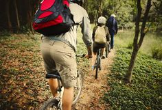 Group of friends ride mountain bike in the forest together Riding Mountain, Mountain Biking, Workout Pictures, Social Media Images, Group Of Friends, Women Lifestyle, North Face Backpack, Bicycle, Photoshoot