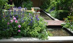 The QVC #Garden by Adam Frost RHS Chelsea Flower Show 2009