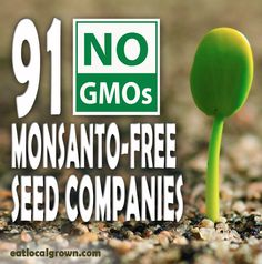 Monsanto-Free Seed Companies.  In 2005 Monsanto bought Seminis (a seed company.)  Many big name seed sellers like Burpee buy from Seminis so by buying their seeds you are in turn supporting Monsanto.   They claim that seed under Seminis are non GMO seeds but the profit from them still goes to Monsanto.  Use this list to avoid companies that sell Seminis seeds.