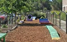 dog playground ideas - might need something like this in my backyard!