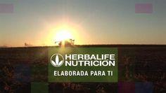 Nutrición Herbalife: Diseñada para ti