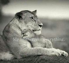 My Mother, my everything