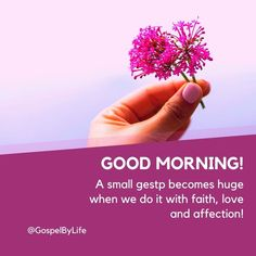 Good Morning Flowers Pictures, Good Morning Images, Flower Pictures, Daily Prayer, Social Networks, Beautiful Images, Prayers, Faith, Gud Morning Images
