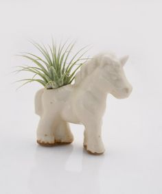 Unicorn air plant planter pod Terrarium by claylicious on Etsy