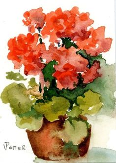 Watercolor Art, Water Color Paintings, Geraniums Watercolor, Art Watercolors, Watercolor Paintings, Flower Watercolor, Geraniums Watercolour, ...