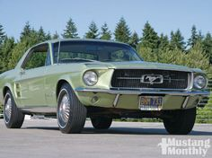 1967 Mustang-that's my car!