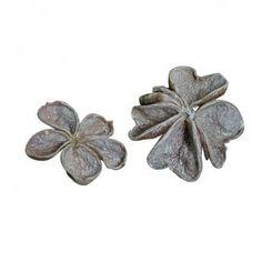 land lotus stone washed wit https://www.bissfloral.nl/blog/2017/10/07/land-lotus-stone-washed-wit/