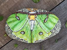 This Luna Moth art stone would look stunning anywhere you put it. Perhaps it would look best in a shallow bowl filled with found objects, or