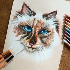 Astonishing Drawings by Astchiek melkonian | FunPal Studio| Art Artist Artwork Entertainment beautiful Drawing Illustration Watercolor paintings Creativity
