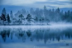 Landscape Wallpaper, Landscape Paintings, Landscapes, Sunrise Wallpaper, Sunrise Lake, Shadow Silhouette, Stunning Photography, Nature Adventure, Photos Of The Week