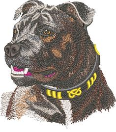 Embroidery Design: Staffordshire Bull Terrier Med<br> X Equine Photography, Animal Photography, Black Lab Puppies, Corgi Puppies, Staffordshire Bull Terrier, Bull Terriers, Black Labrador, Black Labs, Dog Grooming Business