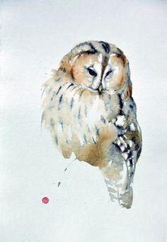 OWL Karl Martens