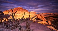Sunset Point at Capitol Reef National Park, Utah Capitol Reef National Park, Grand Teton National Park, National Parks, Mormon Pioneers, Sunset Point, Park Service, The Great Outdoors, Monument Valley, Canada