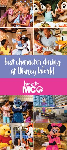 Best Character Dining at Walt Disney World. The goal is to provide you with the…