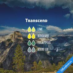 Transcend - Essential Oil Diffuser Blend