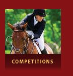 Halton Place Horse & Country - Explore the Exceptional Farms, Equestrian, Competition, Horses, Baseball Cards, Explore, Country, Places, Lugares