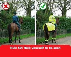 Highway Code Law 50: Riding Horses on Public Roads