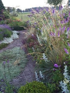 annasträdgård - Lila,silver och vitt eller rostbrunt,vinrött och choklad?