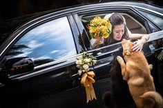 26 most beautiful wedding photos of 2014  Category Family, Autumn 2014, Guangzhou, China
