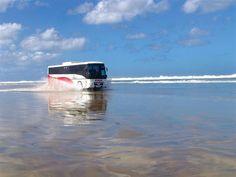 New Zealand.  Drive down 90 Mile Beach near Cape Reinga.