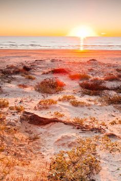 Padre Island National Seashore, Texas