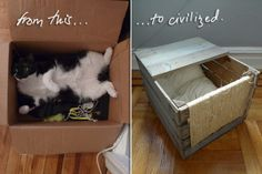 DIY play box & bed for the cat, with scratching wall