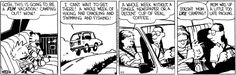 Calvin and Hobbes by Bill Watterson for Aug 8, 2017 | Read Comic Strips at GoComics.com
