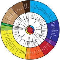 La 'rueda de aromas' del vino es una forma de representación visual de los aromas más comunes que se encuentran en el vino.