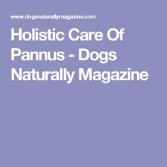 Holistic Care Of Pannus - Dogs Naturally Magazine