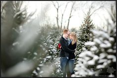 Snowy Christmas Tree Farm engagement session. Bert Pohl Photography
