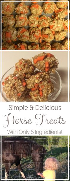 Make homemade horse treats for the equine members of your family with this simple recipe! It only takes 5 ingredients and about 20 minutes!